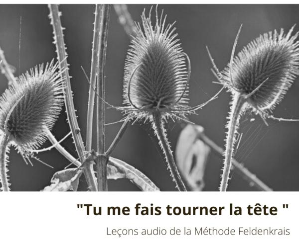 Cours Leçon Audio De feldenkrais Tu me fais tourner la tête
